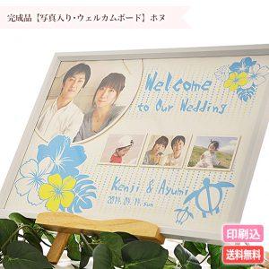 phwb_honu