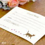 猫好きさんの結婚式に使いたいゲストカード