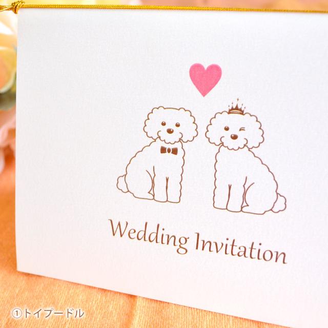 トイプードル 結婚式 招待状 テンプレート