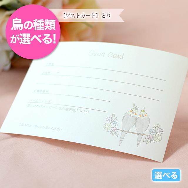 ゲストカード オカメインコ オリジナル